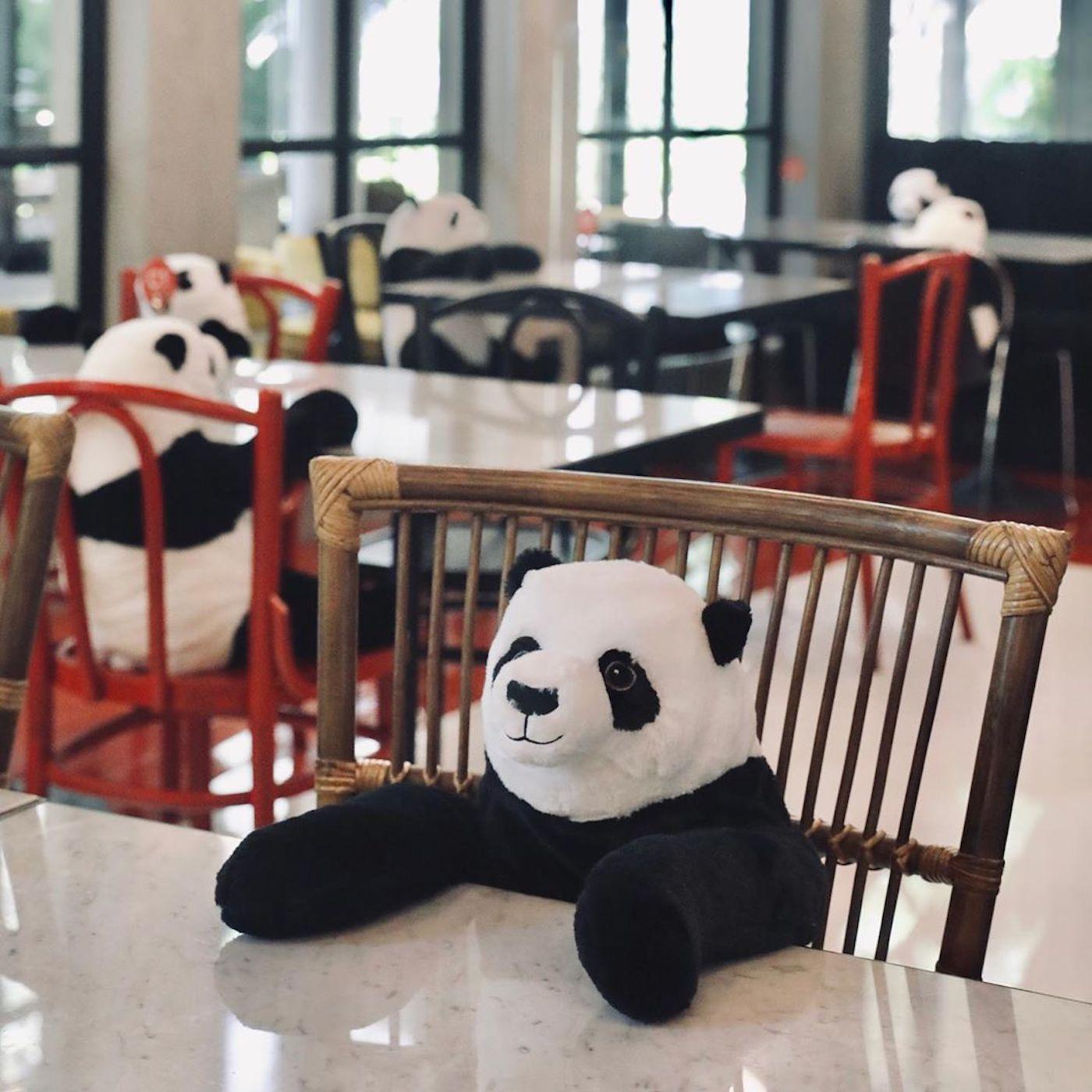 restaurant avec panda géant pour la distanciation
